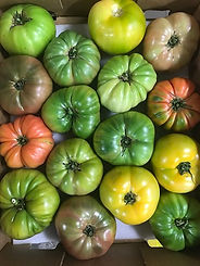 Tomato - Heirloom.jpg