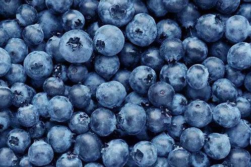 Blueberries (Three 6 oz baskets) - Price TBD