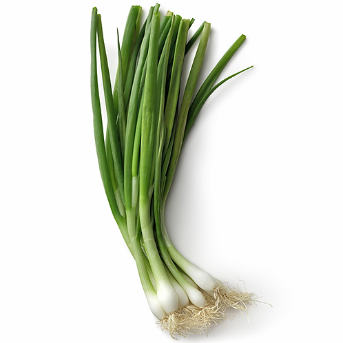 Green Onions / Scallions (12 Bunches or 2 lb)