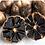 Thumbnail: Black Garlic (1/2 lb)