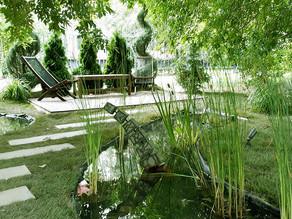 Приглашаем всех в Парк искусств Музеон на VIII фестиваль Moscow Flower Show