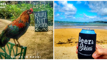 Kauai, Hawaii Eats and Drinks