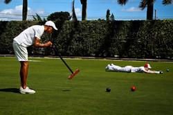 croquet stroke.jpg