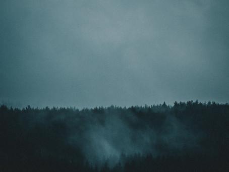 Litt grått vær stopper ikke oss