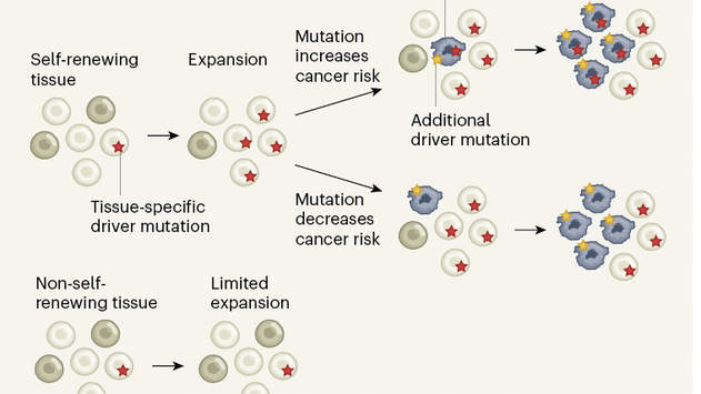 Somatic Signature Mutations - Another Major Leap in Genomics, and Mass Tort Disease Litigation