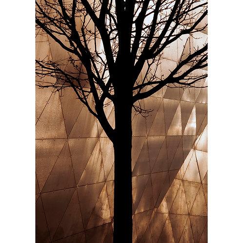Libeskind Tree
