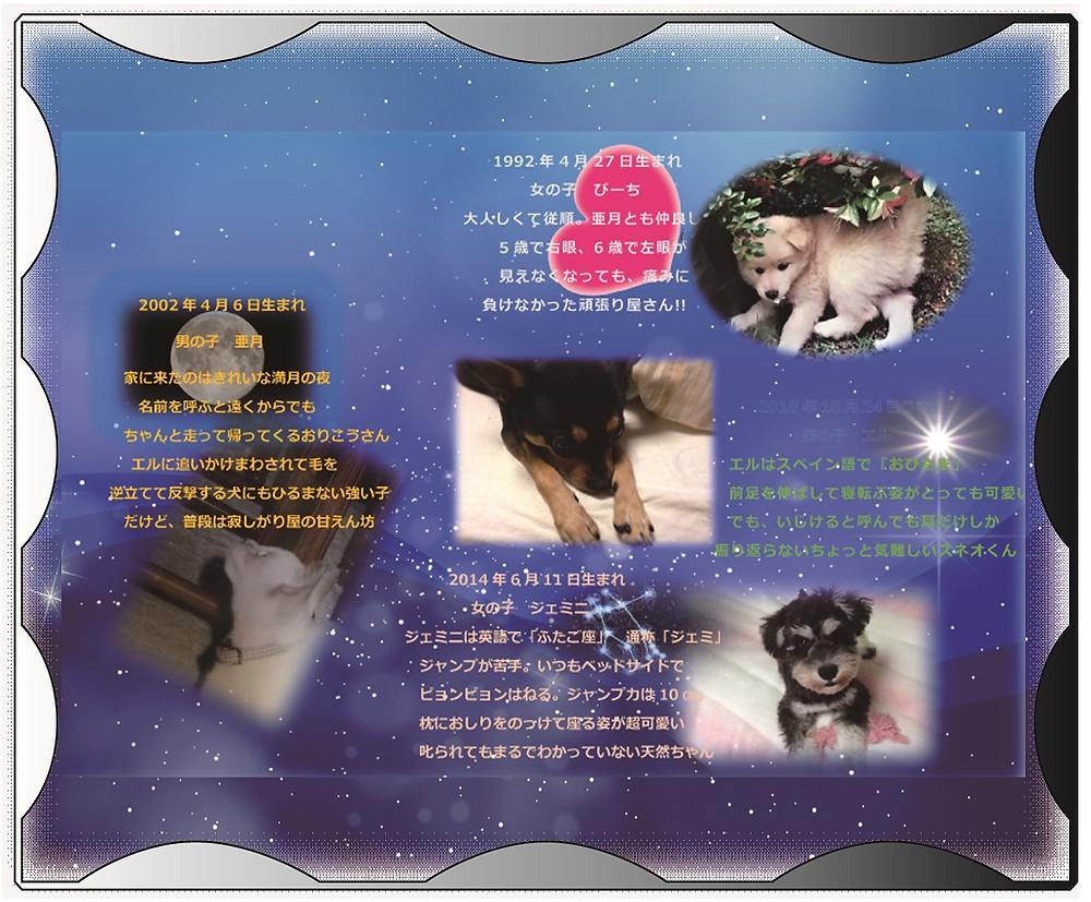 ペット供養クリスタル