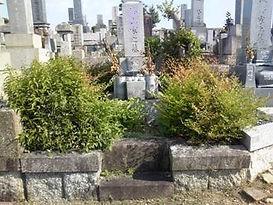 名古屋市 八事霊園 お墓リフォーム 植栽の伐根 ご法名の追加彫刻 色の入れなおし
