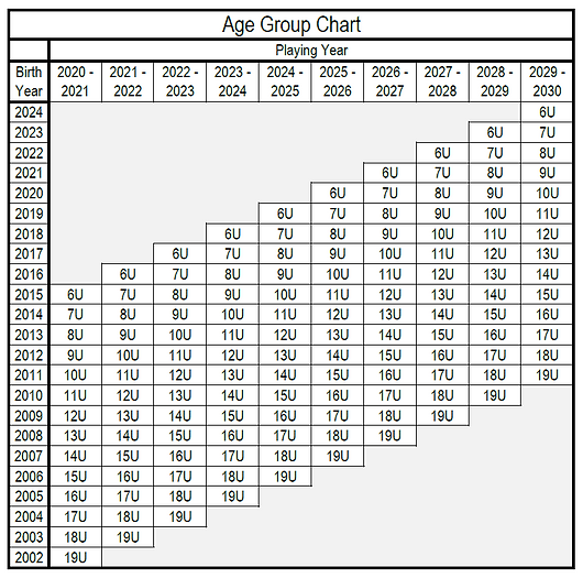 age_group_chart_2020_update.png