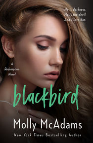 Blackbird_Medium.jpg