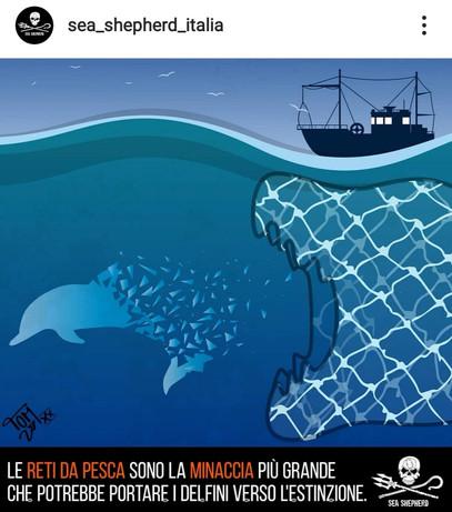 Dessin pour la campagne de Sea Shepherd