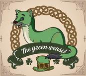 Guitariste - The green weasel - Groupe de musique irlandaise