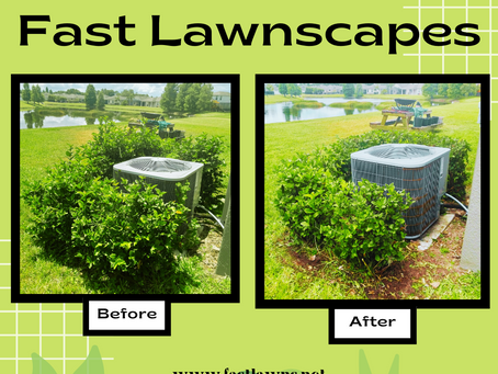 The Miracle of Fast Lawnscapes 🍃