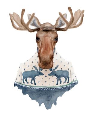 moose_rgb.jpg