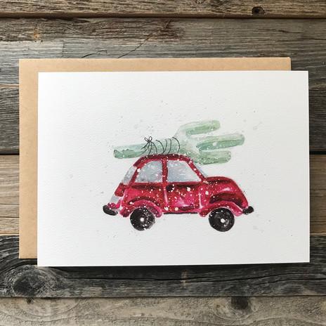 Cactus on a Car