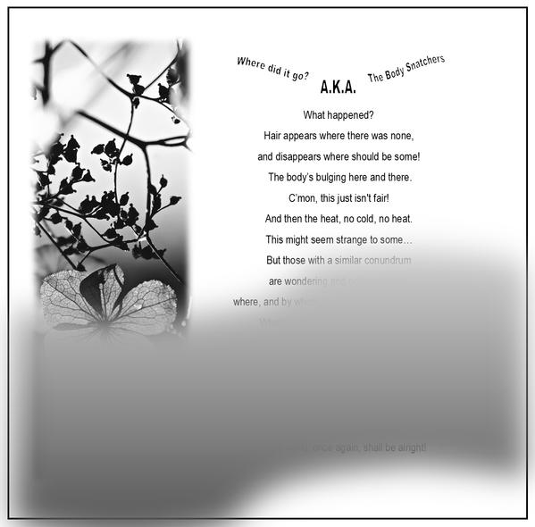 body snatchers poem.png