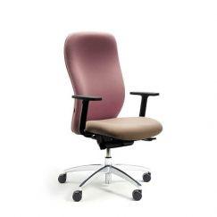 Ergoform Square Task Chair.jpg
