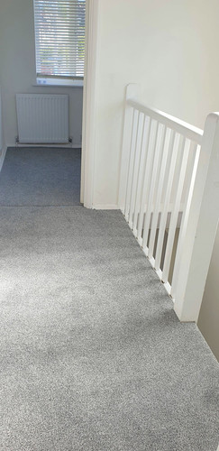 berkshire_facilities_group_maintenance_services_carpet