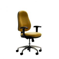 Buzz Task Chair.jpg