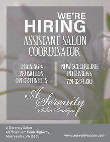 serenity hiring ad.jpg