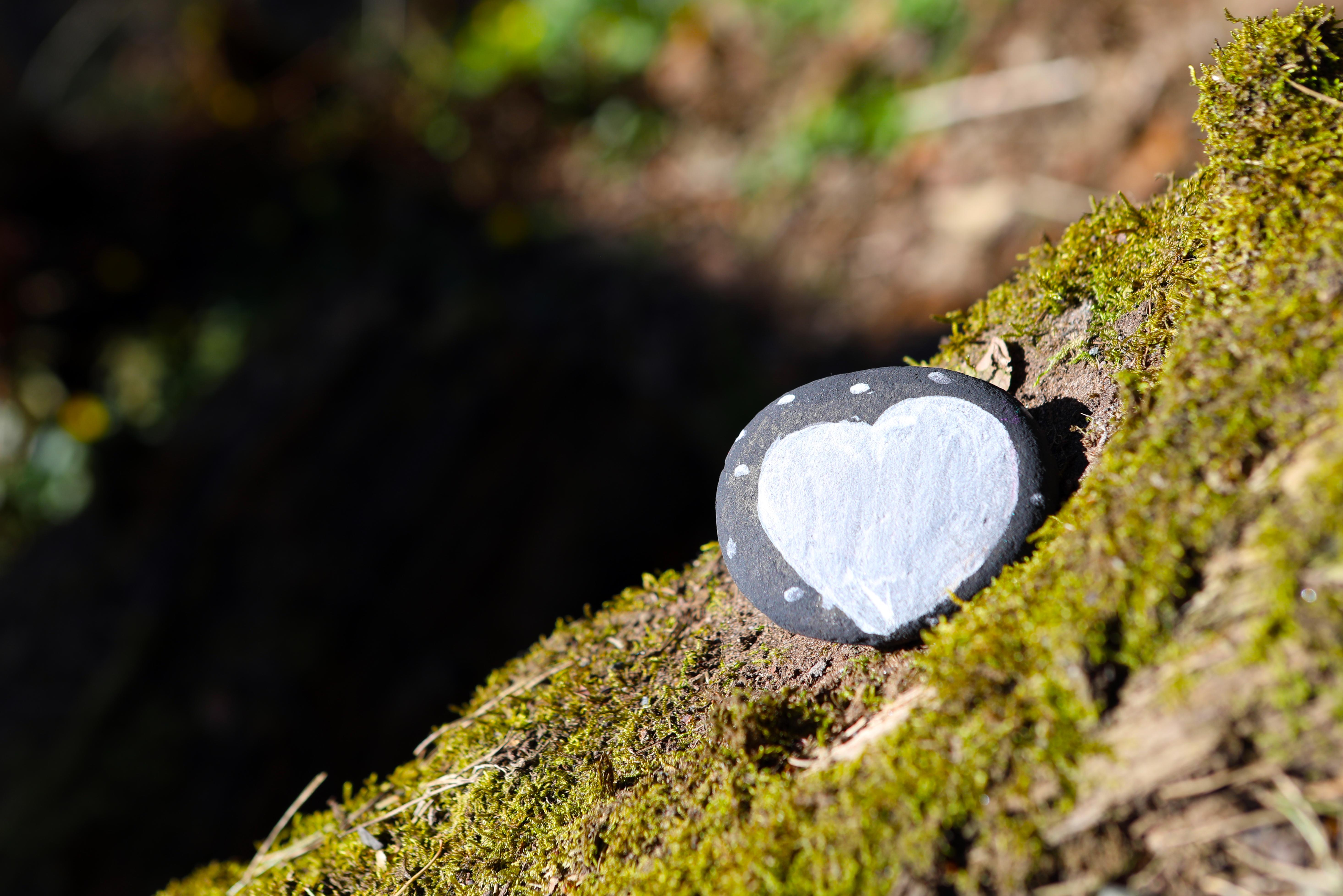 White Heart.jpg
