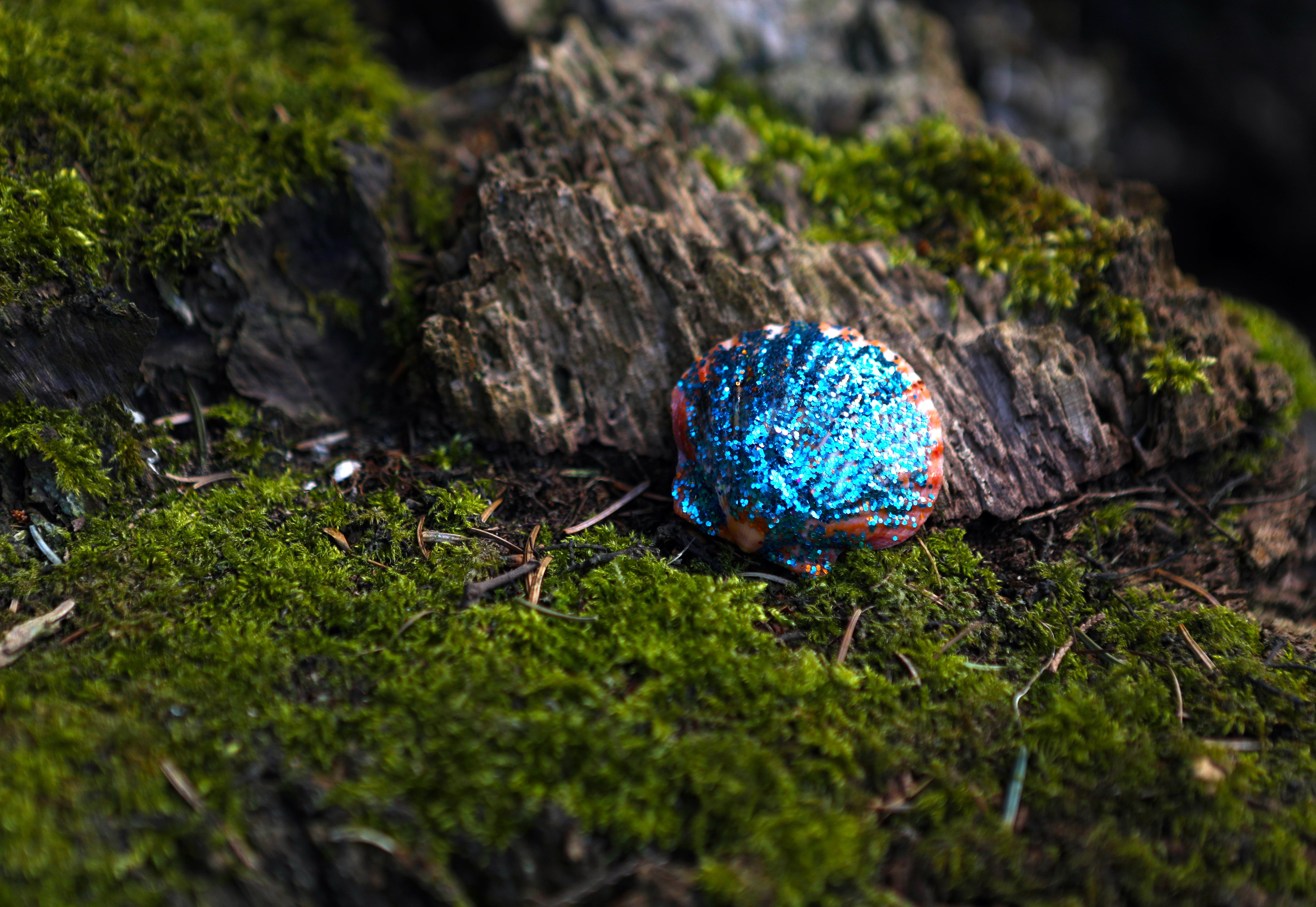 Blue Glitter Shell.jpg
