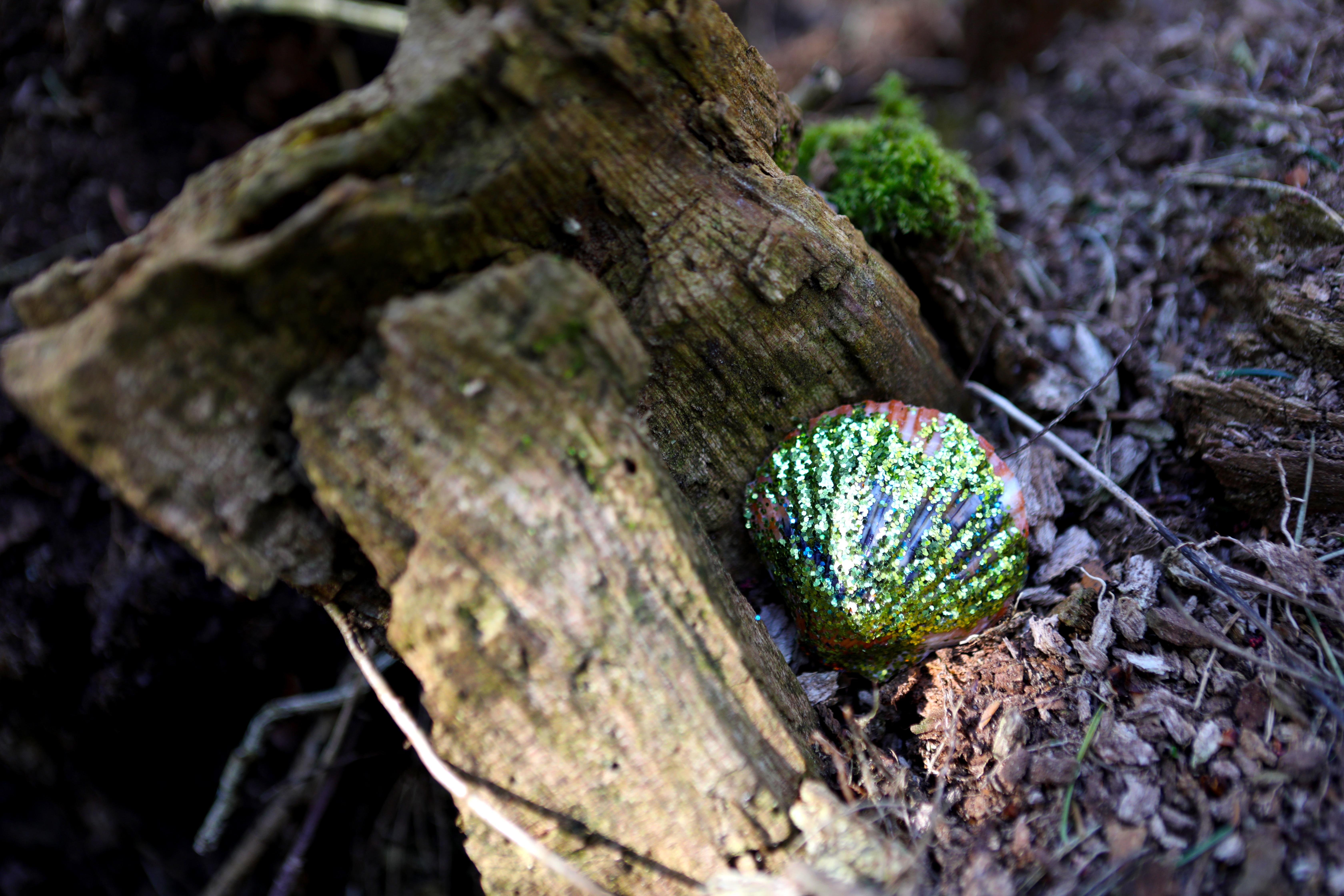 Glitter Shell.jpg