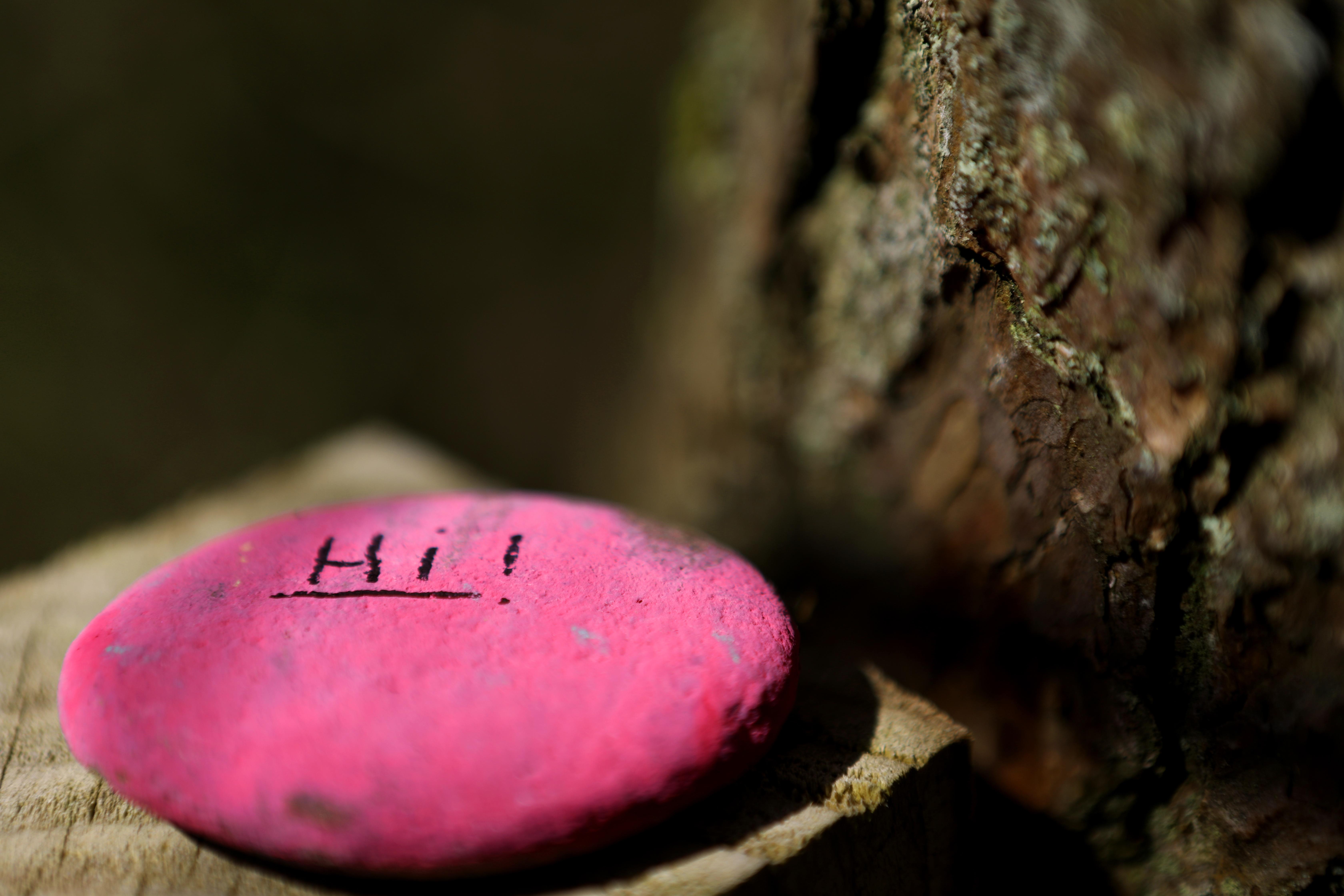 Pink Hi.jpg