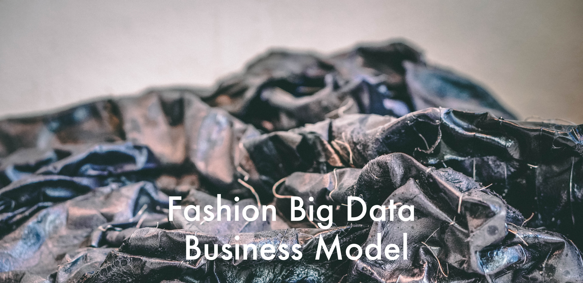 Fashion Big Data Business Model