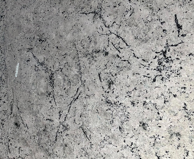 Granite with Grey shades 3cm Thickness