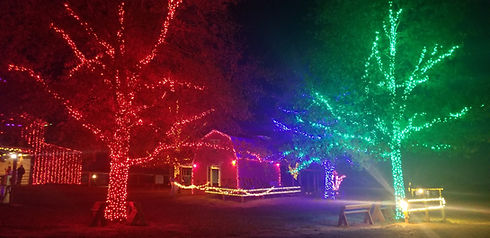 Lazy Acres in Lights #4.jpeg