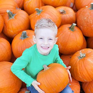 Boy Smiling with Pumpkin Stock (3).jpg