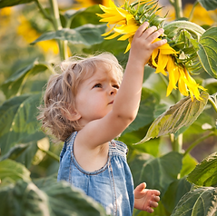 Boy with Sunflower Stock.png