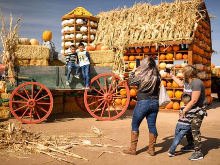 Fall Festival at Fritzler Farm Park Open This September!