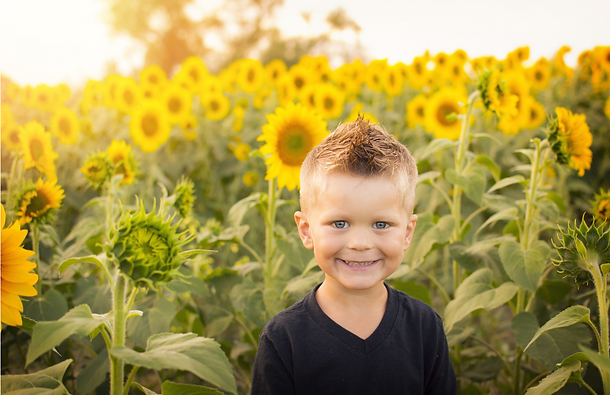 Boy in Sunflower Field Stock (1).png