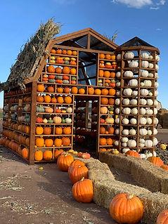 Pumpkin House .JPG