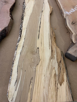 Spalted English Beech