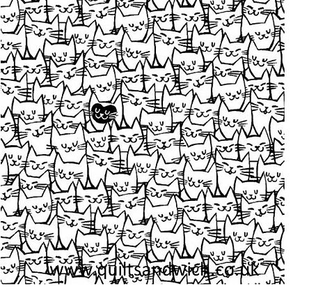 Packed Cats - 108inches  wide