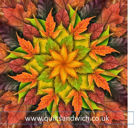 Dream Big Panel Leaf Autumn 43inches X43inches Quiltsandwich