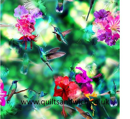 Hoffman Hummingbird  per qtr metre