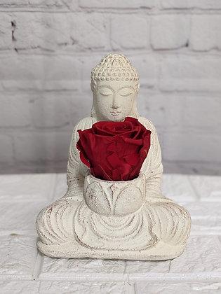 Bouddha Rose éternelle