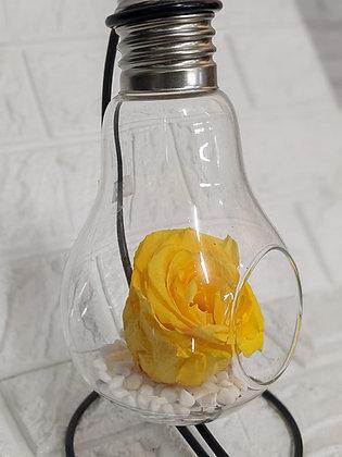 Rose jaune éternité