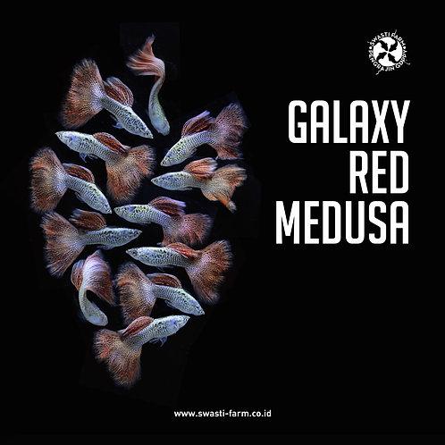 GALAXY RED MEDUSA