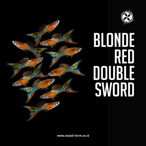 2 PASANG BLONDE RED DOUBLE SWORD