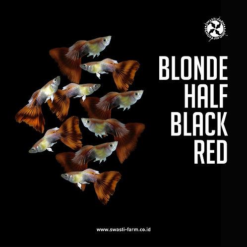 BLONDE HALF BLACK RED