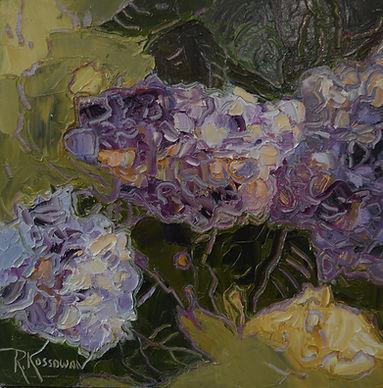 Kossowan, R. Bloomin' Htdrangeas, oil on