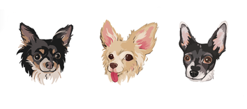 DogDrawings.png