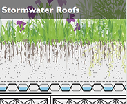 Stormwater Roofs.png