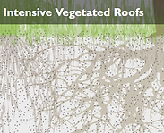 Intensive Vegetative Roofs.png