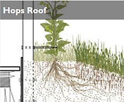 Hops Roof.png